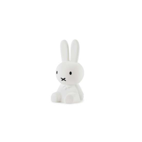 Mr Maria, Miffy First Light
